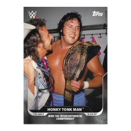 3-card Bundle - This Moment in WWE History - UK Cards 19-21