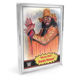 Topps DE WWE Living Set® 2-Karten Bündel - Karten #49-50