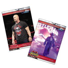 WWE Champions Karten (Regulär)